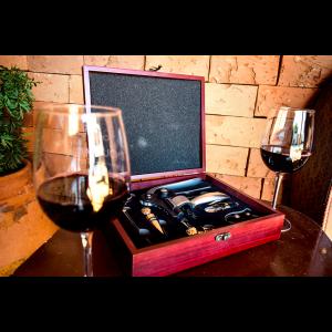Kit Profissional para Vinho 8 Peças Simona